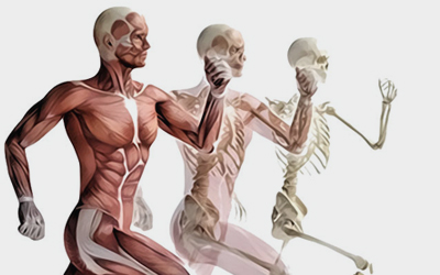kineziterapija - lečenje pokretom